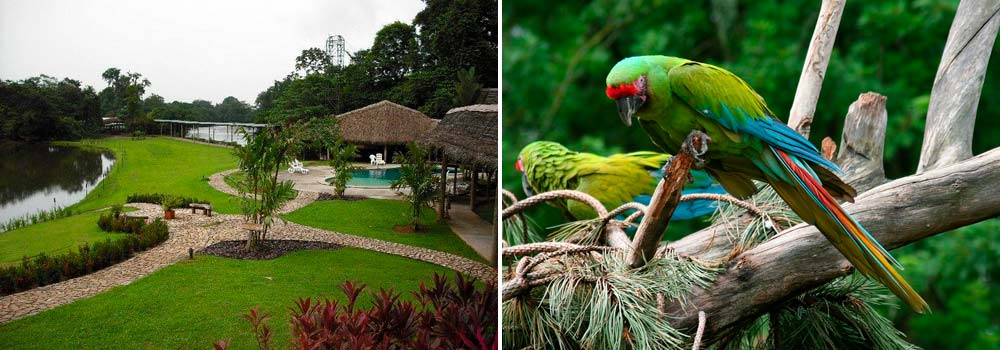 costa rica photography wildlife tour day 8